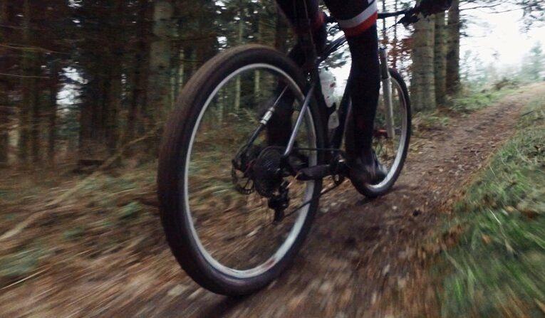 Hvor og hvornår må du cykle i skoven?